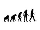 进化放置无敌版