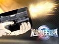 枪战射击模拟器武器全开版