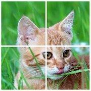 猫之谜拼图官网版v3.11